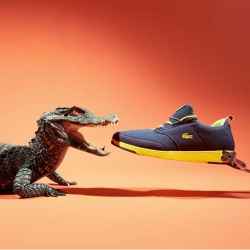 Animals vs Sneakers, a fun photos series by Joseph Ford for Sneakers Magazine.