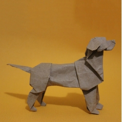 Origami from Steven Casey including a dog series, Australian fauna and more.