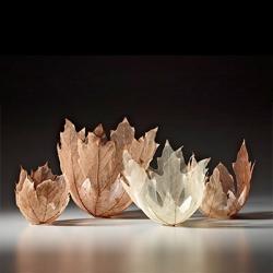 Beautiful leaf bowls by Kay Sekimachi.