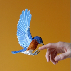 A new series of paper birds from Diana Beltran Herrera.