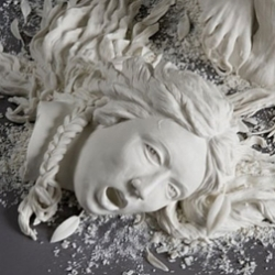 Don't Panic asked Kate MacDowell about dead animals, baroque aesthetics, and bugs crawling on people's faces.