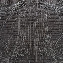 Anna Von Mertens creates beautiful quilts using scientific phenomena.