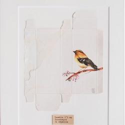 Sara Landeta paints beautiful birds on the backs of medicine boxes.