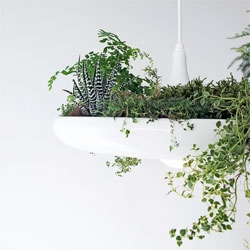 A plantable light fixture called Babylon by Ryan Taylor will debut at Toronto Design Week.