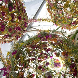 Our highlights from the 2014 Chelsea Flower Show, including some incredible floral installations, a barbecue-lover's dream garden, Chelsea pensioner sheep and more.