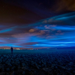 WATERLICHT by Daan Roosegaarde is a public project for the Dutch Water Board. Using the latest LED technology the dream landscape raises awareness about the power and poetry of water creating a Northern lights style effect.