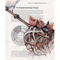 Paula Swisher's birds in books are beautiful illustrations of birds in old science and engineering manuals.