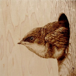 Julie Bender's beautiful pyrographic artwork creates gorgeous illustrations on wood.