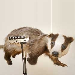 David Cranmer's incredible Badgermin, an unexpected musical instrument created by combination of the Theremin and a badger. That's right, a badger!