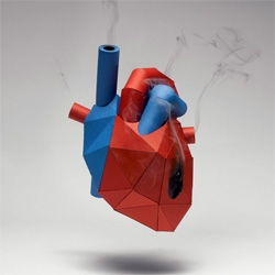 Kyle Bean's paper anatomical heart created for an article about heart disease in Mens Health Magazine.