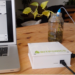 Bitponics, a system to simplify hydroponic gardening. Sensors in your garden track conditions, then sends notifications back to your device to control things such as pumps and lights