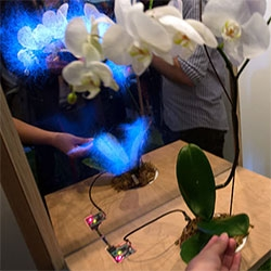 Botanicus Interacticus by Disney Research at Siggraph. Turning plants into interactive sensors, demonstrated by their beautiful booth, letting you caress, grab, and poke their plants, creating visualizations in the magic mirror.