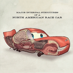 Jake Parker imagines what the anatomy of Pixar's Cars characters would look like.