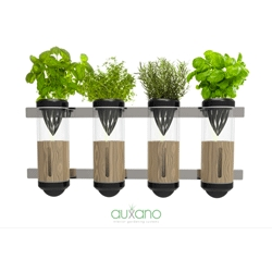 The Auxano Hydroponic Vegetable and Herb Grower by Philip Houiellebecq, a hydroponic herb setup for your home.