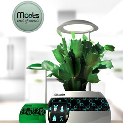 Moots hydroponic garden by Matej Korytár for Electrolux Design lab tell you if the plants need more water.
