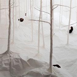 Wald aus Wald by Takashi Kuribayashi, an interesting installation at the Hong Kong Arts Centre.