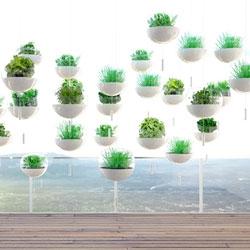 Skyfarm, a hanging balcony garden concept, by Manuel Dreesmann.