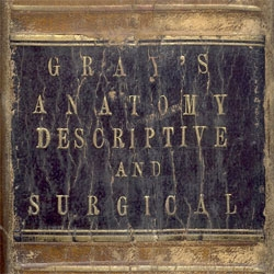 Gray's Anatomy turns 150 years old - and is still one of the top anatomical references today! [for more images of vintage copies, see http://www.braceface.com/medical/ ]