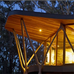 The Trunk House by Paul Morgan Architects in Victoria's Central Highlands created from the trees from the Stringybark woodland that surrounds it.