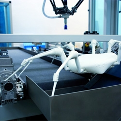 RoboSpider, just one of Wired's menagerie of robot animals.