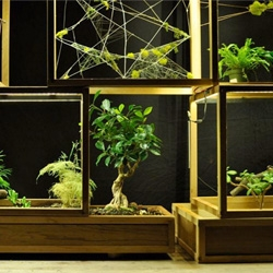 Plant-in City, a proposed art installation that takes terrariums to the 21st Century with plants occupying stackable structures in a gallery space in Manhattan.