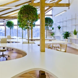OpenAD's 'Office Greenhouse' interior in Riga, Latvia. Love the use of indoor plants!