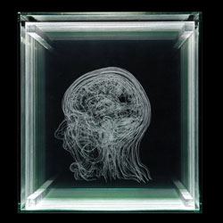 Angela Palmer's incredible scientifically and anatomically inspired artwork. She creates beautiful pieces from drawing or engraving details from MRI and CT scans onto multiple sheets of glass.