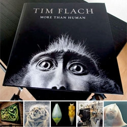 """Gorgeous photos of incredible species! Photographer Tim Flach launches his latest book """"More Than Human"""" at his Shoreditch studio. The book explores the relationship between humans and animals capturing the beauty of individuals."""