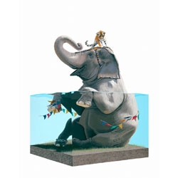 Josh Keyes, opens a new solo show, The Circus and The Sea, at Roq La Rue Gallery in Seattle.