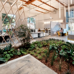 The Cunningham Group created this sustainable Culver City office within a warehouse and with its own indoor garden.