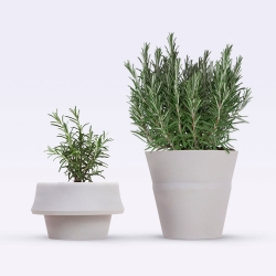 Fold Pot from Pizzolo Russo can grow with your plants.