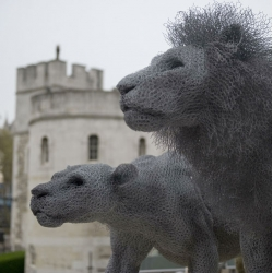 Incredible wire scukptures by Kendra Haste. The artist currently has an installation at the Tower of London.