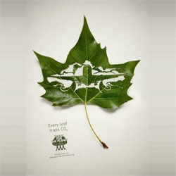 CO2 absorbing leaves are cut to form this great ad campaign by Legas Delaney for 'Plant for the Planet'.