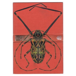 Rose Anderson's beautiful Bugs on Book Covers.