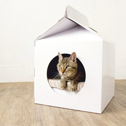 Cute carton-shaped home for cats from MOISSUE, The Milk Box!