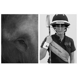 Photographer Stefan Heinrichs' beautiful photo essay on Elephant Polo.