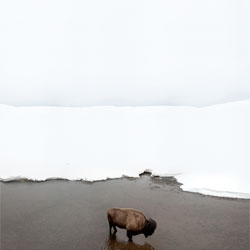 Photographer Michael Zimmerer's White Horizon series captures beautiful snowscapes across the American West.