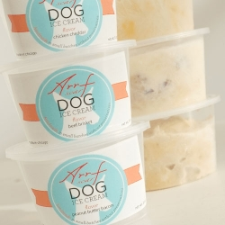 Arrfscarf's fresh handmade treats and ice cream for dogs!