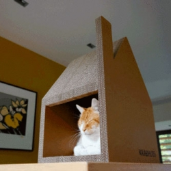 Krabhuis, a scratchable cardboard house for cats.