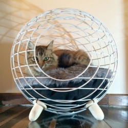Modern cat beds from Lord Paw.