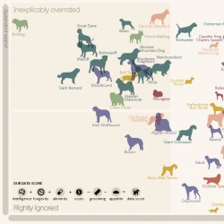 Top dog? Dog breeds compared by intelligence, longevity, ailments, costs, grooming and appetite. All compared to their popularity. Interesting visualisation from Miriam Quick, Andrew Park and David McCandless.
