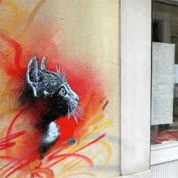 Gorgeous new street art stencils in Lisbon from C215.