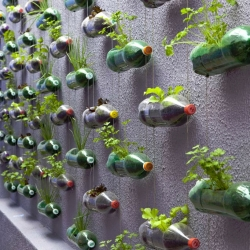 Gorgeous vertical garden made from recycled soda bottles. Part of Home Sweet Home (Lar Doce Lar) between multidisciplinary design firm Rosenbaum and TV producer Luciano Huck.