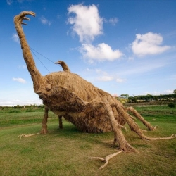 Giant beasts made from straw following the rice harvest in Japan.