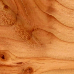 Waves of grain from Keith Skretch. The strata-cut animation was created by planing down a block of wood one layer at a time, photographing it at each pass.