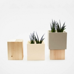 Alessandro Di Prisco's duo combines a ceramic cube and block of fir wood to form a beautiful planter.