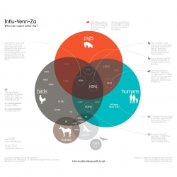 Influ-venn-za, an infographic from David McCandless on who can catch which flu.