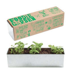 Foodie Garden Kits designed by Noted with illustrations from Joel Holland.