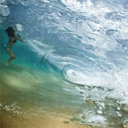 Mark Tipple's 'The Underwater Project' captures swimmers and surfers from under the surface.