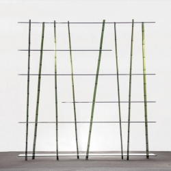 Bamboo Forest from Poetic Lab bring bamboo and glass together.